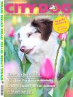 City Dog Magazin